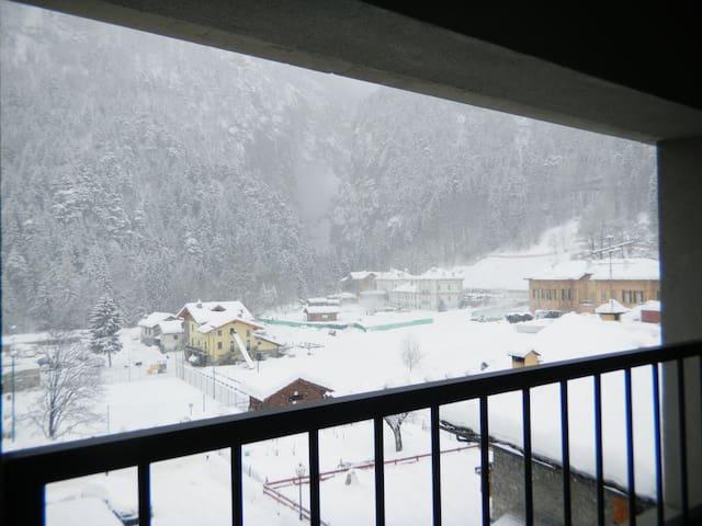 Valle D'Aosta-Courmayeur Sci Terme
