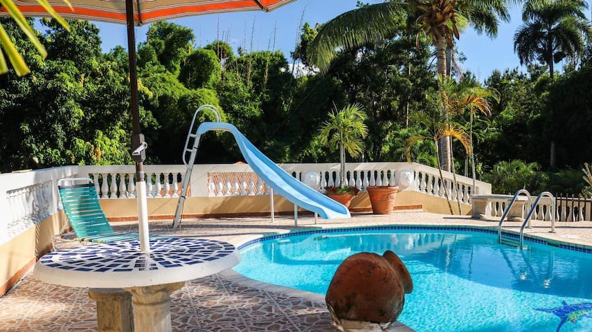 Casa Thais | Pool | Up to 5 guests Downtown Rincon