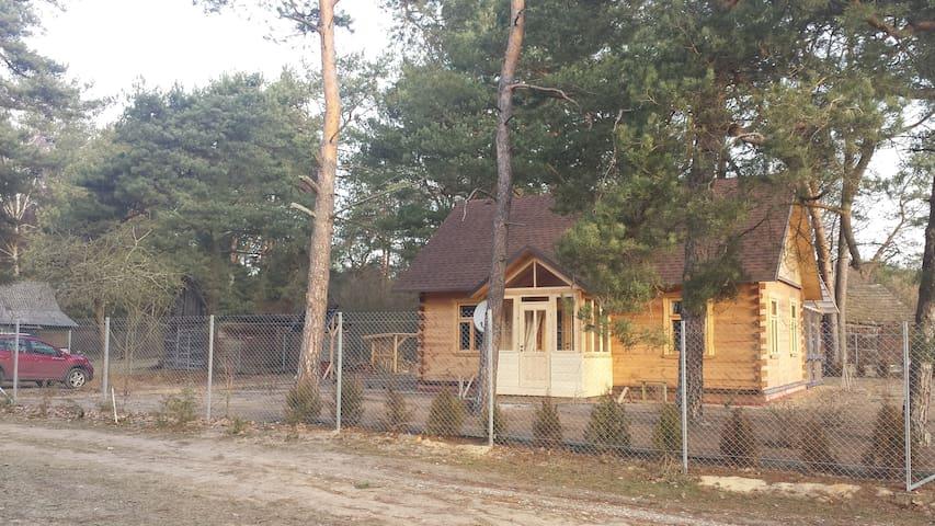 """Шале/дом  """"Василёк""""сдается для загородного отдыха - Ciuchiničy - Apartment"""