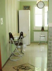 Homey 1-2 bed apartment - Kielce - Huoneisto