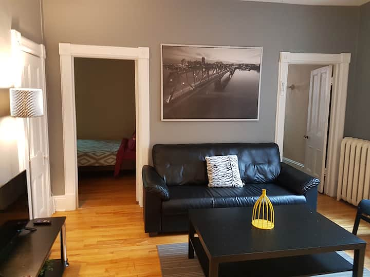 Great Two Bedroom  apartment downtown ottawa