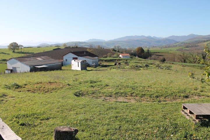 TERRA SYLVA : Camping à la ferme avec vue