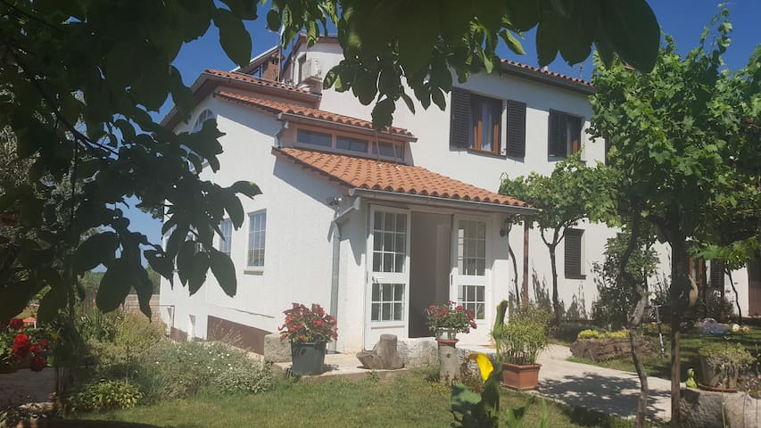 Lovely and comfotable appartment - Sveti Lovreč - Daire