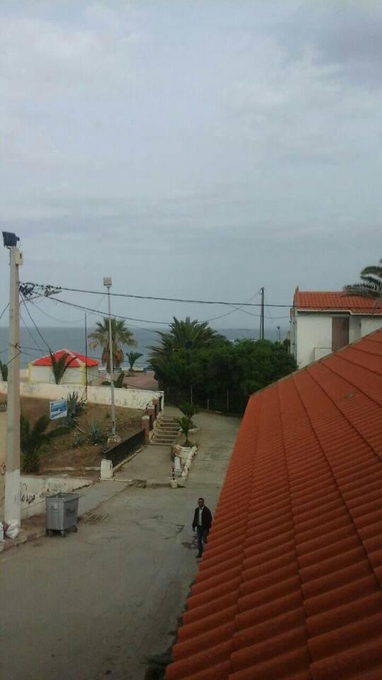tamaris location