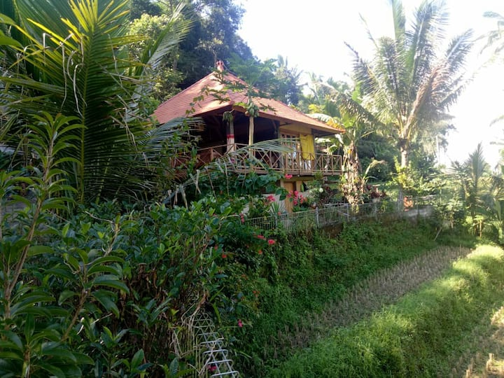 Babahan Farmstay|RiceTerrace| Villa|Wifi|kitchen|