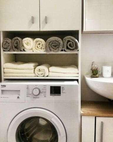 A modern bathroom with a washing machine and a spacious shower corner. You will find a hair-drier and an iron here and the ironong desk and the laundry-drier are hidden under the bed.