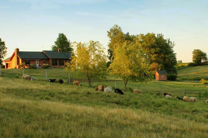 Foreside Acres - Resort to a simpler life