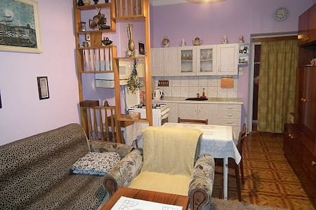 Flat in the heart of Decin close to via ferrata