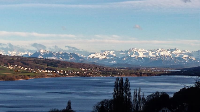 Beautiful Lake + Alpine views - Birrwil - Leilighet