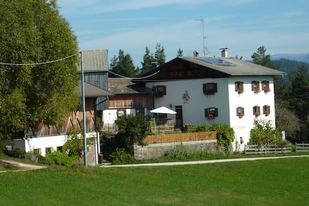 Badstuberhof in Deutschnofen Südtirol. - Deutschnofen - Bed & Breakfast