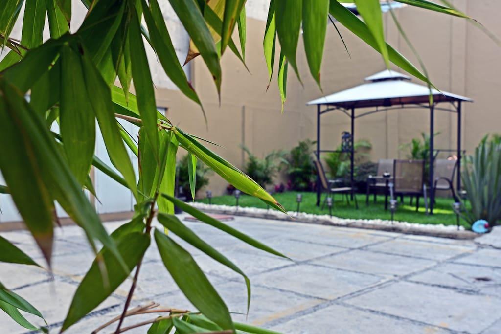 Jardín de areas comunes