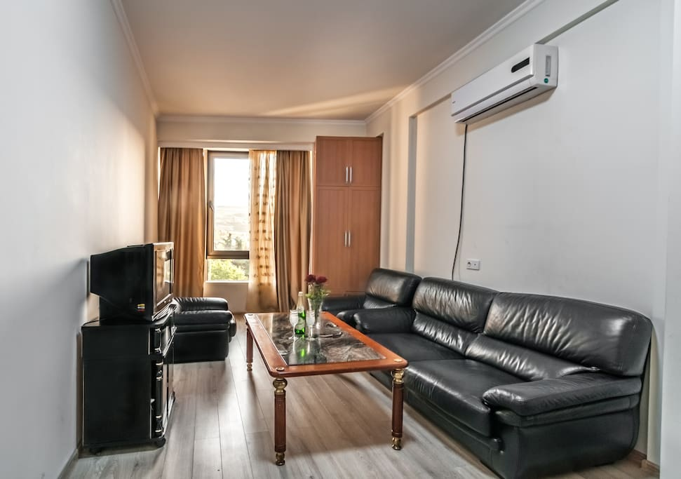 Business-style living room with air conditioning N2