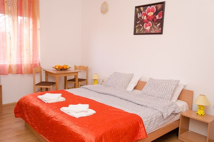 Comfortable and lovely studio in Sokobanja spa - Sokobanja - Pis