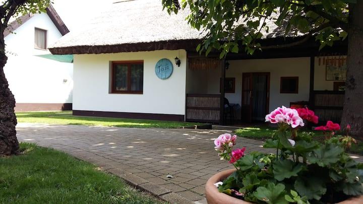 Tisza ház