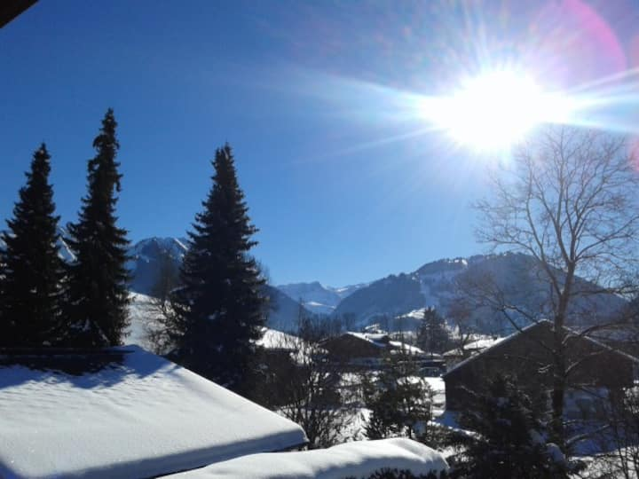 Sunny 2 bedroom flat with view in Gstaad