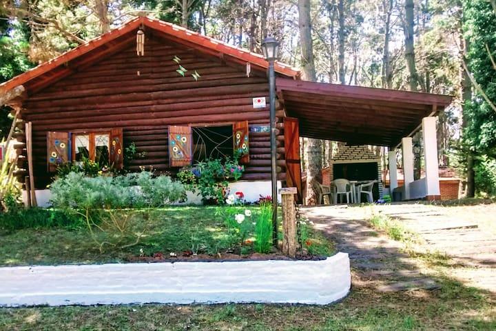 Cabaña Sustentable en Costa del Este