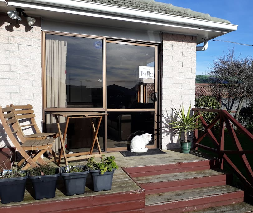Home Away From Home Clean Sunny Welcoming Guest Suites For Rent In Christchurch