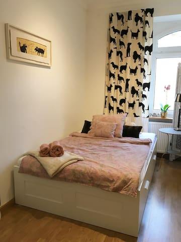 Hübsches Zimmer in der Altstadt. Nur Frauen!