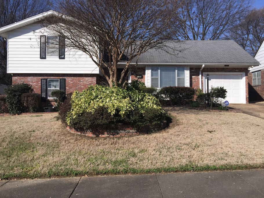 Well maintained lawn and garden.