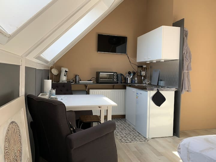 Comfortable  nice room 1-4 pers. in Zwolle centre