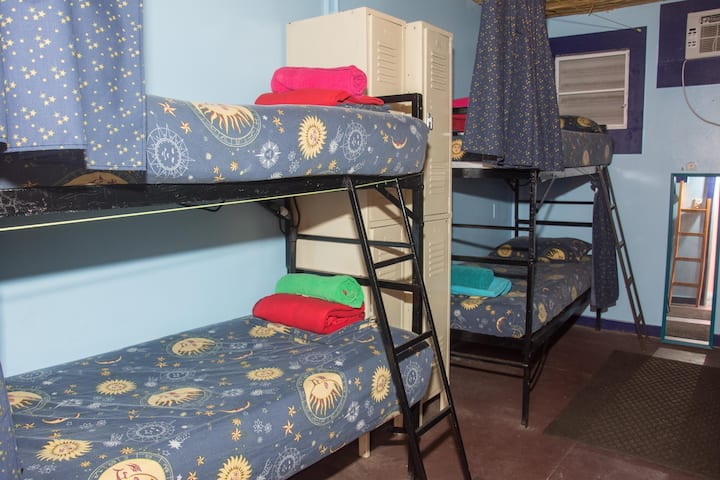 Mixed 8-Bed Dormitory Lazy Hostel