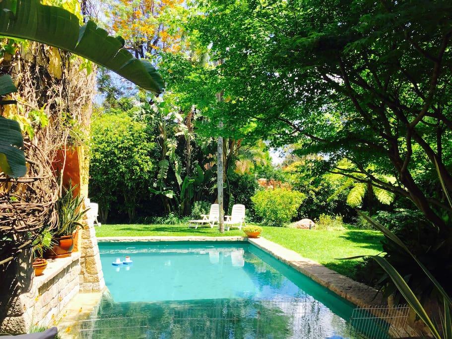 piscina y vista parcial del jardin