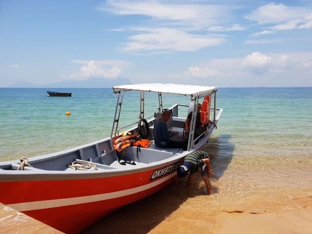 House to stay, seafood and boat for sightseeing..