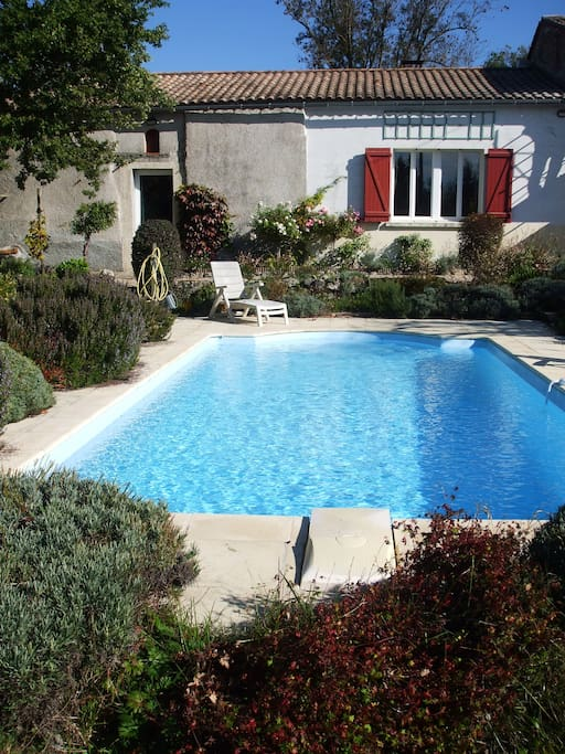 The swimming pool is surrounded by rosemary and lavender bushes