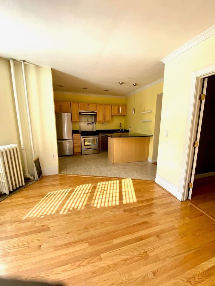 Lovely 2 bed in South End.  Walk to everything!