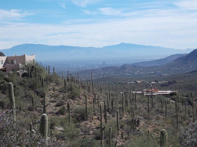 Tucson Mountain Sanctuary