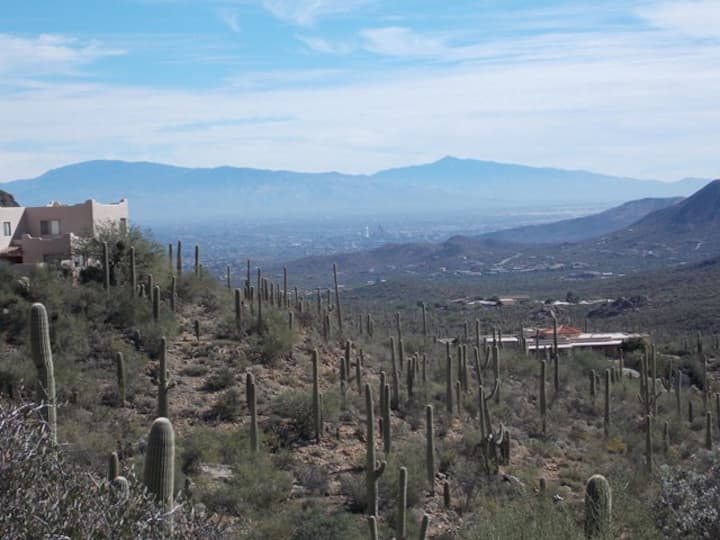 Tucson Mountain Sanctuary