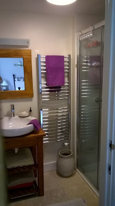 En-suite with toilet, basin, and large shower
