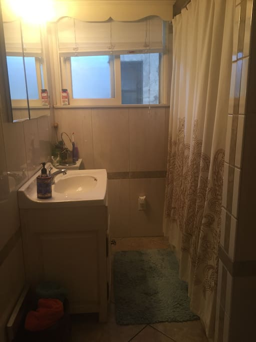 Full Bathroom w/Shower and Tub