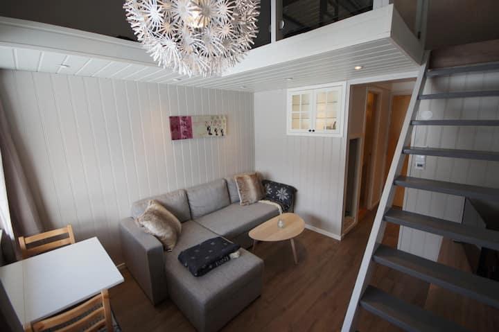 Private mountain apartment along E16, Filefjell