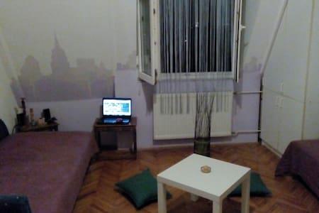 cosy studio near city center - Novi Sad - Appartement