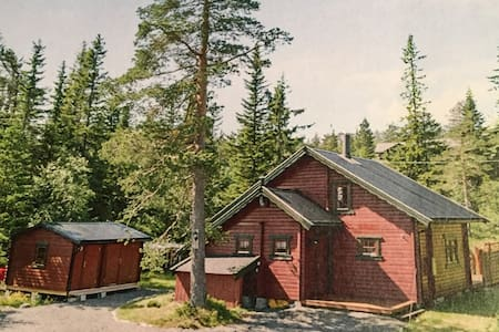 Mountain cabin, 1,5h from Oslo
