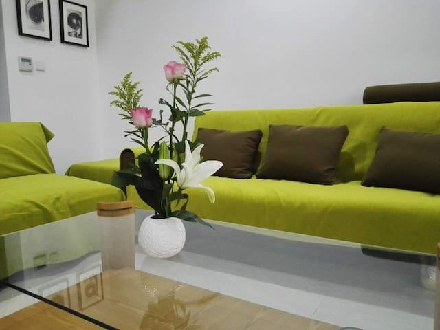 Lovely brand new apartment near Olympic center