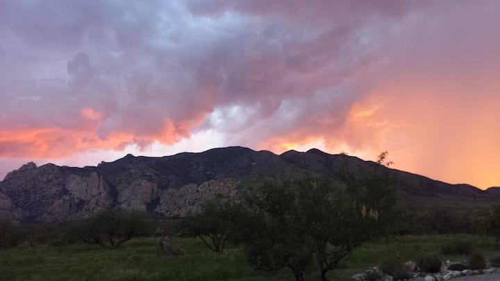 Mountains Trees Desert Solitude