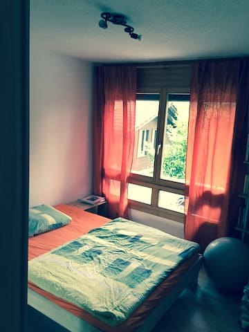 Nice bedroom close to station! - Spiez - Huoneisto