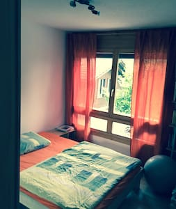 Nice bedroom close to station! - Spiez - Apartment