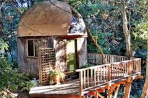 The Mushroom Dome Cabin is now a Meditation Retreat center that you are welcome to hang out in.