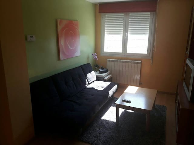 Apartamento muy luminoso - Viana - Apartment