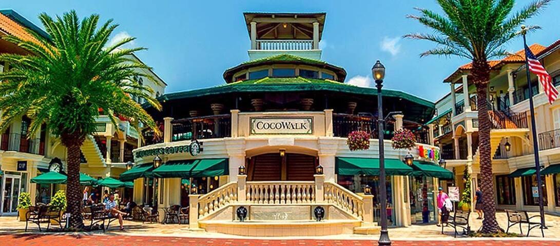 Heart of Coconut Grove - Miami - Apartmen