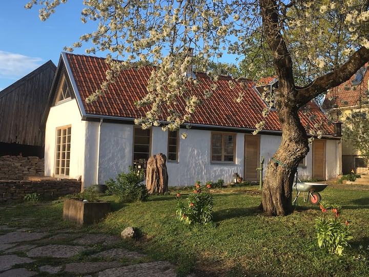 Öland, Karlevi-charmigt kalkstenshus i  ölandsby