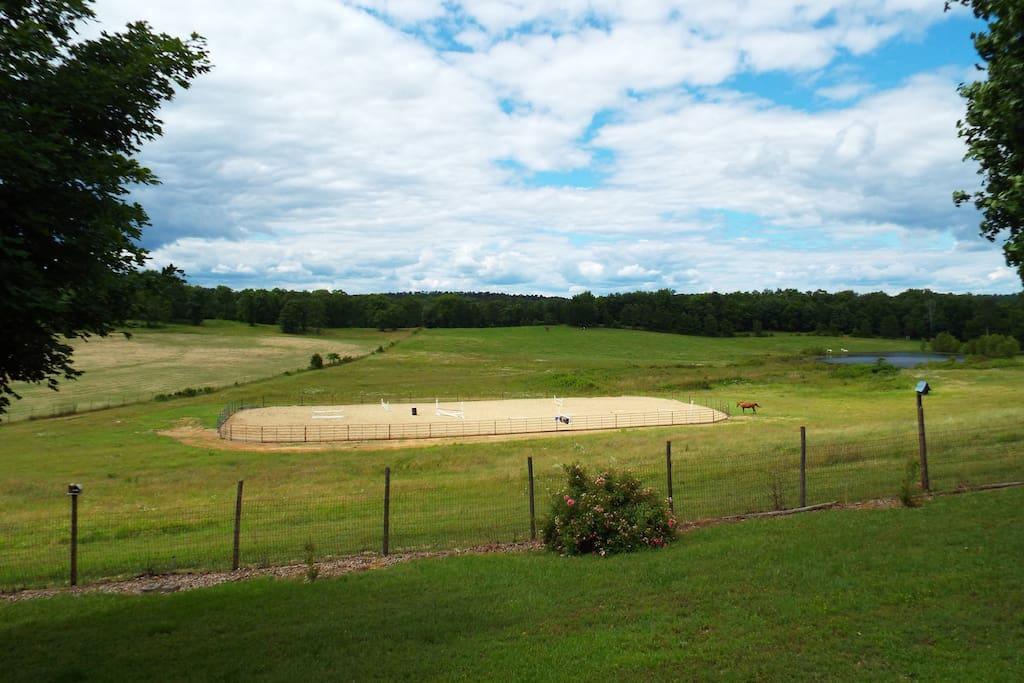 House on twenty acres with horse arena