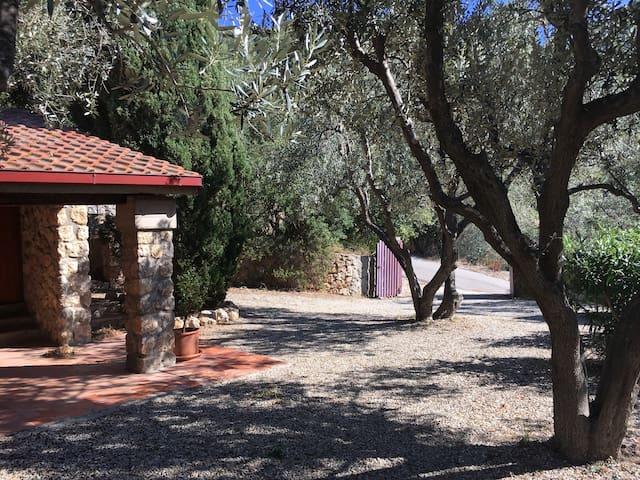 Scorcio giardino Villa Stella