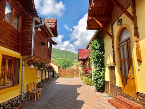 Traditional countryside house & big garden