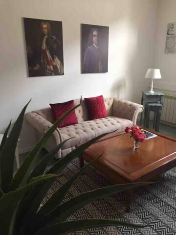 Appartement spacieux cœur centre historique DIJON