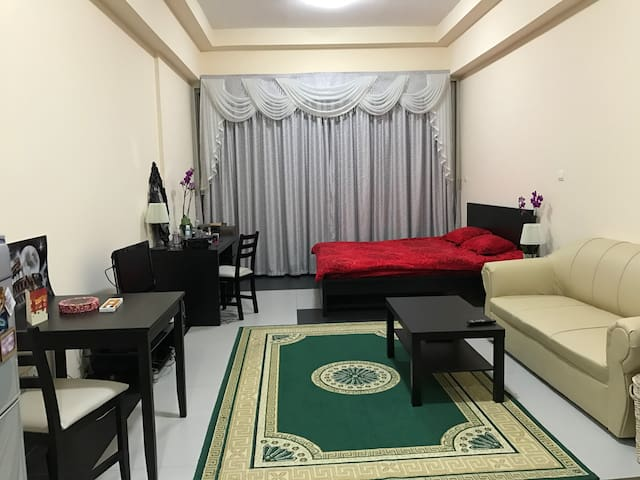 Furnished spacious studio - Dubai - Apartment