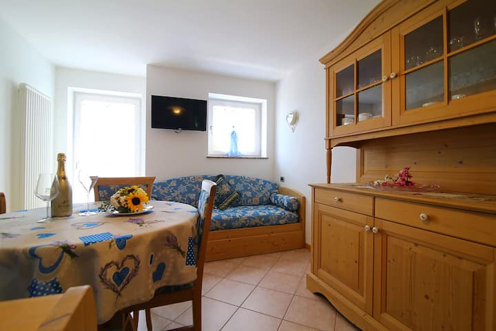 One-bedroom apartment (022081-AT-063381)